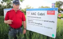 Embedded thumbnail for AAC Cabri
